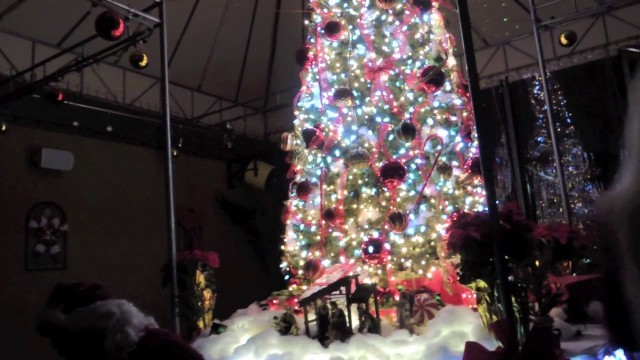 Tutto Pazzo Annual Christmas Tree Lighting